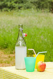 Fresh homemade lemonade on a picnic table Royalty Free Stock Image