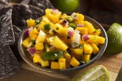 Fresh Homemade Mango Salsa Stock Image
