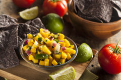 Fresh Homemade Mango Salsa Stock Photos