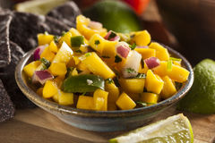 Fresh Homemade Mango Salsa Royalty Free Stock Photos