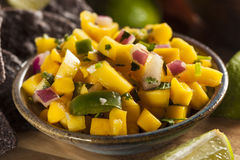 Fresh Homemade Mango Salsa Royalty Free Stock Image