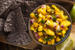 Fresh Homemade Mango Salsa Royalty Free Stock Images