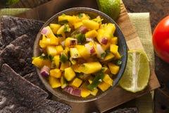Fresh Homemade Mango Salsa Stock Photography