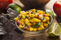 Fresh Homemade Mango Salsa Royalty Free Stock Photo