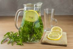 Fresh homemade mint tea. Tempting summer refreshment. Healthy, refreshing drink without sugar. Royalty Free Stock Photography