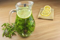Fresh homemade mint tea. Tempting summer refreshment. Healthy, refreshing drink without sugar. Stock Photos