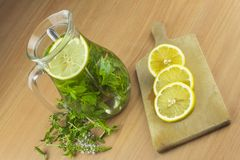Fresh homemade mint tea. Tempting summer refreshment. Healthy, refreshing drink without sugar. Stock Images