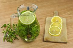 Fresh homemade mint tea. Tempting summer refreshment. Healthy, refreshing drink without sugar. Royalty Free Stock Photos
