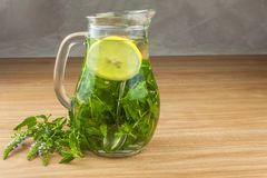Fresh homemade mint tea. Tempting summer refreshment. Healthy, refreshing drink without sugar. Royalty Free Stock Photo