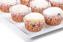 Fresh homemade Muffin on white background Stock Photography