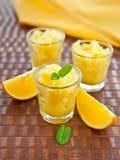 Fresh Homemade Orange Granita Royalty Free Stock Image