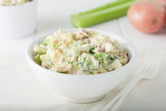 Fresh homemade potato salad Stock Photography
