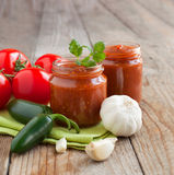Fresh Homemade Salsa Dip Royalty Free Stock Photos