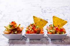 Fresh homemade salsa. With vegetables and chips nachos. Selective focus Stock Photos