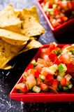 Fresh homemade salsa. With vegetables and chips nachos. Selective focus Royalty Free Stock Photo
