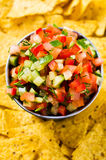 Fresh homemade salsa. With vegetables and chips nachos. Selective focus Royalty Free Stock Photography