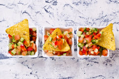 Fresh homemade salsa. With vegetables and chips nachos. Selective focus Royalty Free Stock Images