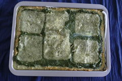 Fresh homemade spinach cake with cheese Royalty Free Stock Image