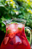 Fresh Homemade Strawberry and Raspberry Lemonade. Very Red Fresh Homemade Strawberry and Raspberry Lemonade with Ice Cubes, Mint and Lime in Glass Jar on Green Stock Image