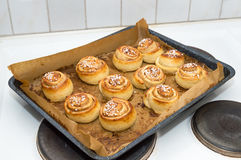 Fresh homemade sweet buns Stock Image