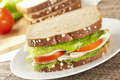 Fresh Homemade Turkey Sandwich Stock Photography