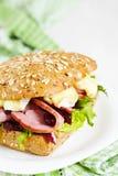 Fresh Homemade Turkey Sandwich Stock Image