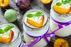 Fresh homemade yogurt with plums, top view Royalty Free Stock Image