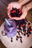 Fresh homemade yogurt smoothie wild berries in a glass jar on an old vintage background, berries in hands, closeup, top. View. Selected focus Harvest Concept Stock Photo