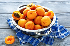 Fresh honey apricots in a colander Royalty Free Stock Image