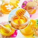 Fresh honey cherry blossoms collage. Fresh honey cherry blossoms, collage royalty free stock photography