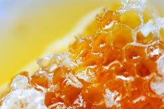 Fresh honey Close up macro of yellow sweet honeycomb natural healthy food. Fresh honey / Close up macro of yellow sweet honeycomb natural healthy food stock image
