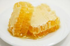 Fresh honey Close up of yellow sweet honeycomb slice on white plate natural healthy food. Fresh honey / Close up of yellow sweet honeycomb slice on white plate stock photography