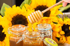Fresh honey with colorful yellow sunflowers Stock Photography