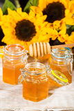 Fresh honey with colorful yellow sunflowers Stock Image
