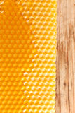 Fresh honey in comb Royalty Free Stock Image