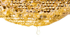 Fresh honey in comb background Royalty Free Stock Images