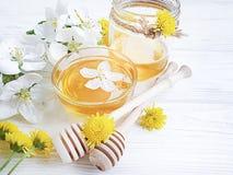 Fresh honey dessert delicious blossom  cherry organic harvest blossoms on gray concrete background. Fresh honey cherry blossoms on gray concrete background royalty free stock image