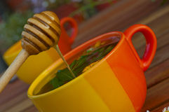 Fresh honey flows into the herbal tea Stock Photography