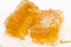Fresh honey with honeycomb Royalty Free Stock Images