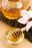 Fresh honey with honeycomb Stock Images