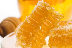 Fresh honey with honeycomb Stock Photos