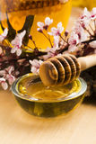Fresh honey with honeycomb Royalty Free Stock Photo