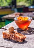 Fresh honey and honeycomb. Fresh honey in glass bowl and honeycomb on the table Stock Photo