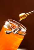 Fresh Honey in jar with honey dipper on vintage wooden backgroun Royalty Free Stock Images