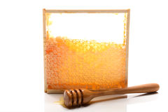 Fresh honey Stock Photos