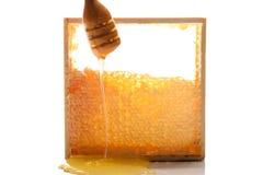 Fresh honey Royalty Free Stock Images