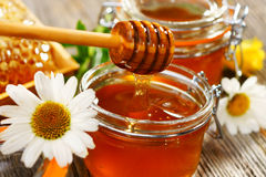 Fresh honey. Honey pot and dipper with flowers Stock Images