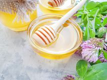 Fresh honey refreshment flower clover dessert natural. Fresh honey flower clover   refreshment dessert natural royalty free stock images