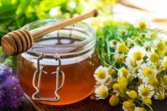 Fresh honey Stock Images