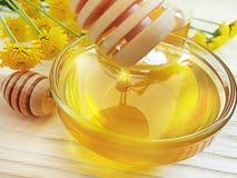 Fresh honey, yellow chrysanthemum flower on wooden background, summer delicacy. Fresh honey, yellow chrysanthemum flower on wooden background summer delicacy stock photography
